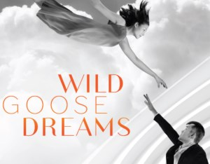 Stage: Wild Goose Dreams