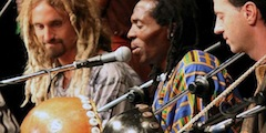 Zimbeat: Music of Zimbabwe