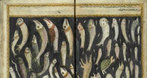 Herring and Lamprey: Fish and Social Status in Medieval Dining