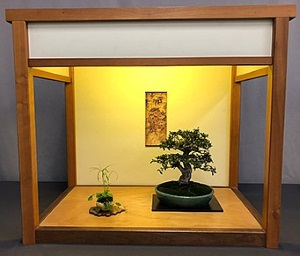 54th Annual Bonsai Spring Show