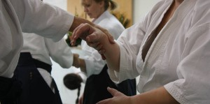 Sports: Free Aikido Workshop