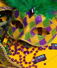 17th Annual Hillcrest Mardi Gras